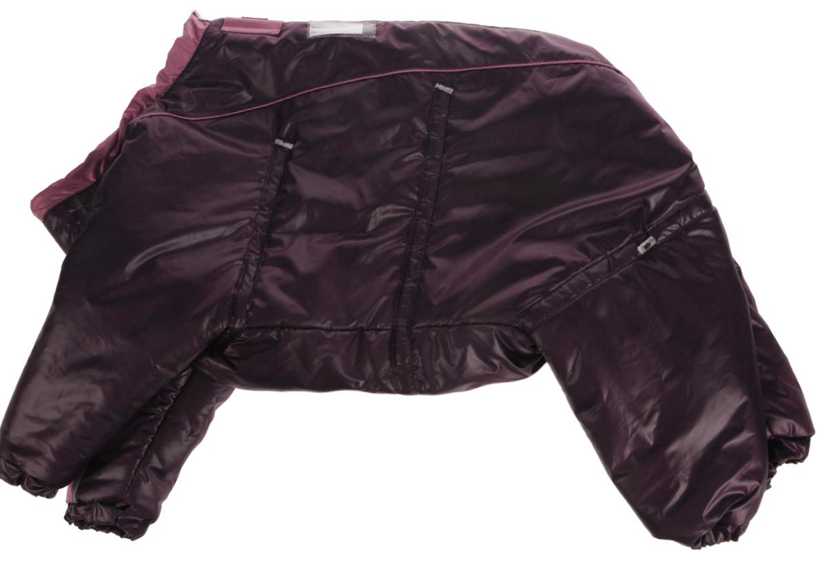 Комбинезон для собак Dogmoda Doggs, зимний, для девочки, цвет: фиолетовый. Размер XXL0120710Комбинезон для собак Dogmoda Doggs отлично подойдет для прогулок в зимнее время года.Комбинезон изготовлен из полиэстера, защищающего от ветра и снега, с утеплителем из синтепона, который сохранит тепло даже в сильные морозы, а на подкладке используется искусственный мех, который обеспечивает отличный воздухообмен. Комбинезон застегивается на молнию и липучку, благодаря чему его легко надевать и снимать. Молния снабжена светоотражающими элементами. Низ рукавов и брючин оснащен внутренними резинками, которые мягко обхватывают лапки, не позволяя просачиваться холодному воздуху. На вороте, пояснице и лапках комбинезон затягивается на шнурок-кулиску с затяжкой. Модель снабжена непромокаемым карманом для размещения записки с информацией о вашем питомце, на случай если он потеряется.Благодаря такому комбинезону простуда не грозит вашему питомцу и он не даст любимцу продрогнуть на прогулке. Длина по спинке: 54 см. Обхват шеи: 74 см. Обхват груди: 100 см.