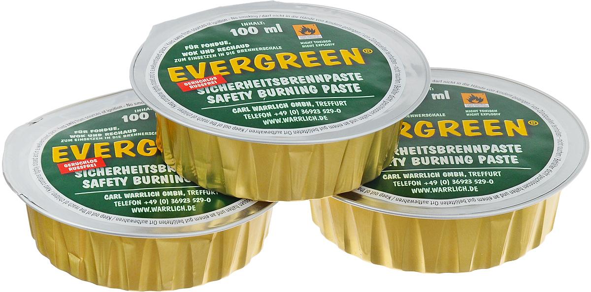 Горючее для фондю Carl Warrlich Evergreen, 3 х 100 мл0059900Горючее для фондю Carl Warrlich Evergreen - очень удобное средство и является источником тепла для приготовления фондю. Также заменяет средство для розжига для мангалов, грилей. Гель безопасен, не токсичен, горит без запаха и гари, безвреден для окружающей среды, он изготовлен на основе чистого этанола. Набор включает в себя три баночки с гелем, выполненные из алюминиевой фольги.Объем одной баночки с гелем: 100 мл.Количество баночек: 3 шт.