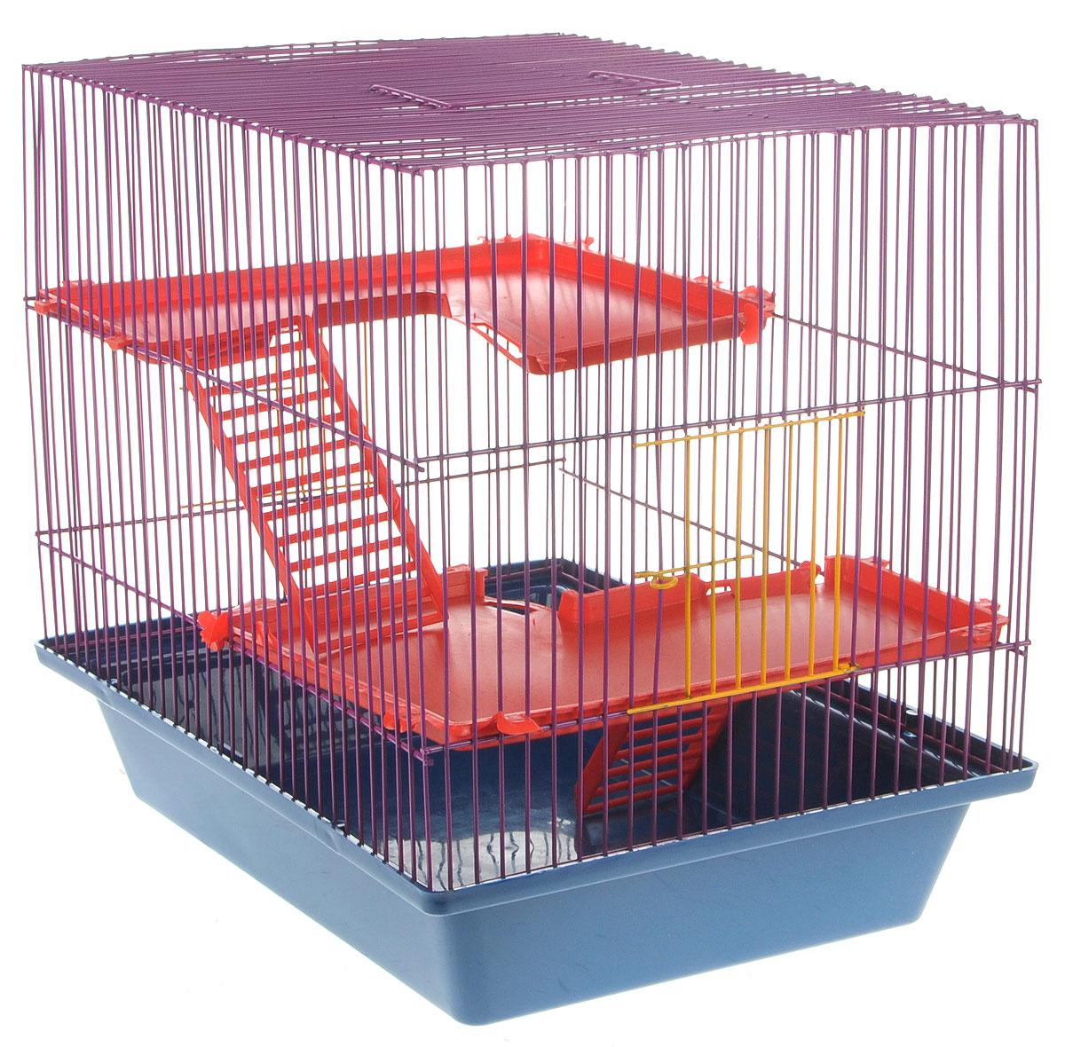 Клетка для грызунов ЗооМарк Гризли, 3-этажная, цвет: синий поддон, фиолетовая решетка, красные этажи, 41 х 30 х 36 см410_красный/оранжевыйКлетка ЗооМарк Гризли, выполненная из полипропилена и металла, подходит для мелких грызунов. Изделие трехэтажное. Клетка имеет яркий поддон, удобна в использовании и легко чистится. Сверху имеется ручка для переноски.Такая клетка станет уединенным личным пространством и уютным домиком для маленького грызуна.