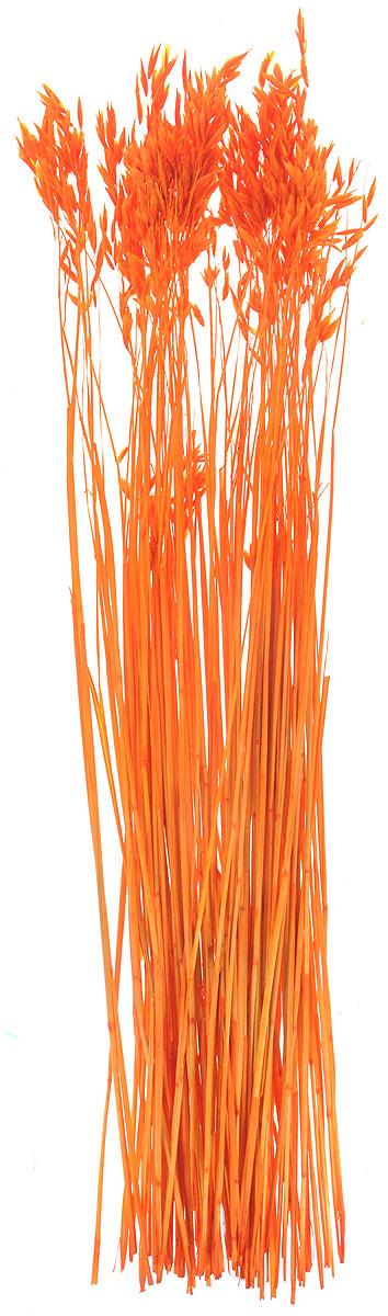 Украшение декоративное Lovemark Пучок овса, цвет: оранжевый, длина 70 смNLED-424-2.5W-RУкрашение декоративное Пучок овса - великолепный подарок себе и вашим близким. Этот очаровательный предмет интерьера будет приковывать взгляды ваших гостей.Изделия из соломы несут в себе энергию солнечных лучей. Несмотря на свой хрупкий вид, cолома - прочный и долговечный материал, а значит не помнется и не поломается со временем. Рекомендации по уходу: изделие должно находиться в сухом помещении.
