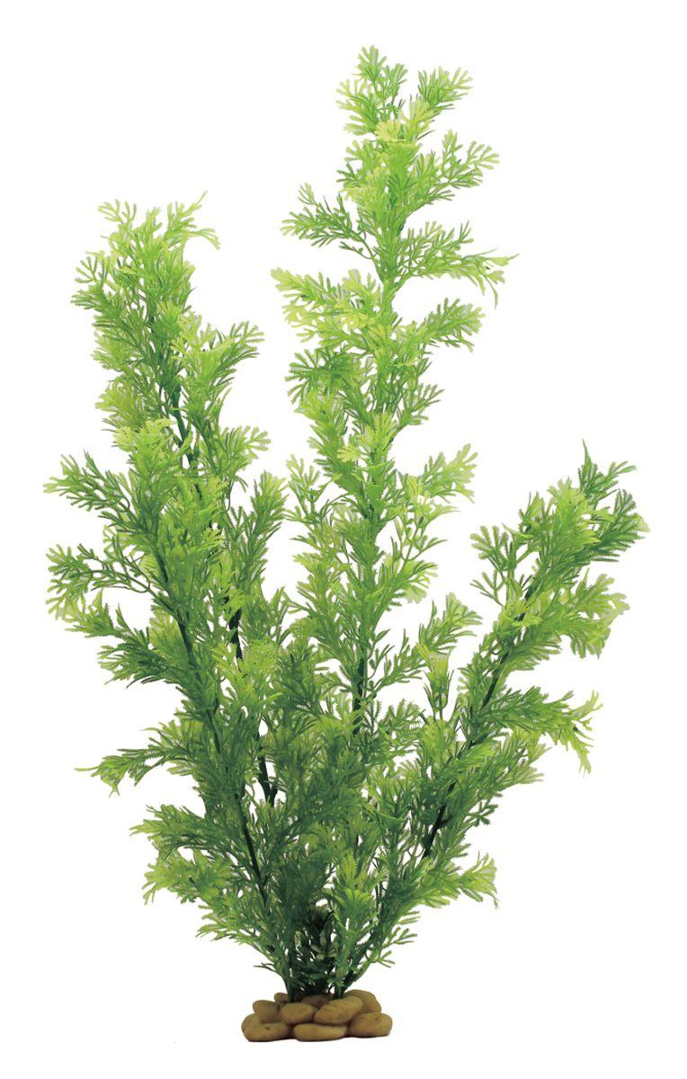 Растение для аквариума ArtUniq Папоротник индийский, высота 60 см0120710Композиция из искусственных растений ArtUniq превосходно украсит и оживит аквариум.Растения - это важная часть любой композиции, они помогут вдохнуть жизнь в ландшафт любого аквариума или террариума. Лучше всего это сделают яркие и сочные цвета искусственных растений серии ArtPlants. А их сходствос природными порадует даже самых взыскательных ценителей.