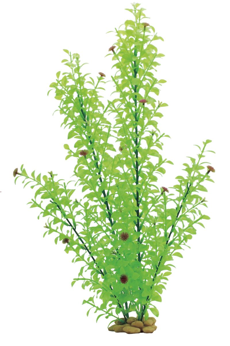 Растение для аквариума ArtUniq Гигрофила многосемянная, высота 60 см0120710Растение для аквариума ArtUniq Гигрофила многосемянная, высота 60 см