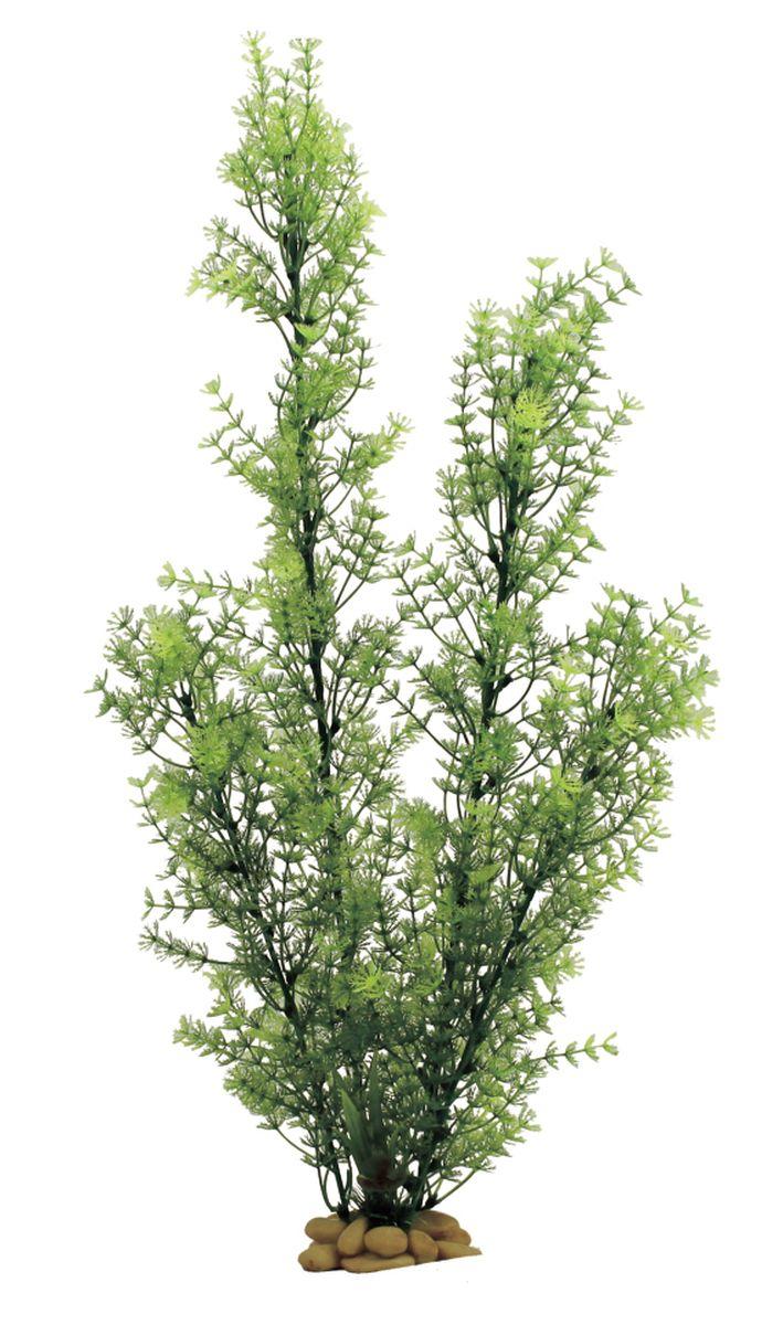 Растение для аквариума ArtUniq Роголистник зеленый, высота 60 см0120710Композиция из искусственных растений ArtUniq превосходно украсит и оживит аквариум.Растения - это важная часть любой композиции, они помогут вдохнуть жизнь в ландшафт любого аквариума или террариума. А их сходствос природными порадует даже самых взыскательных ценителей.