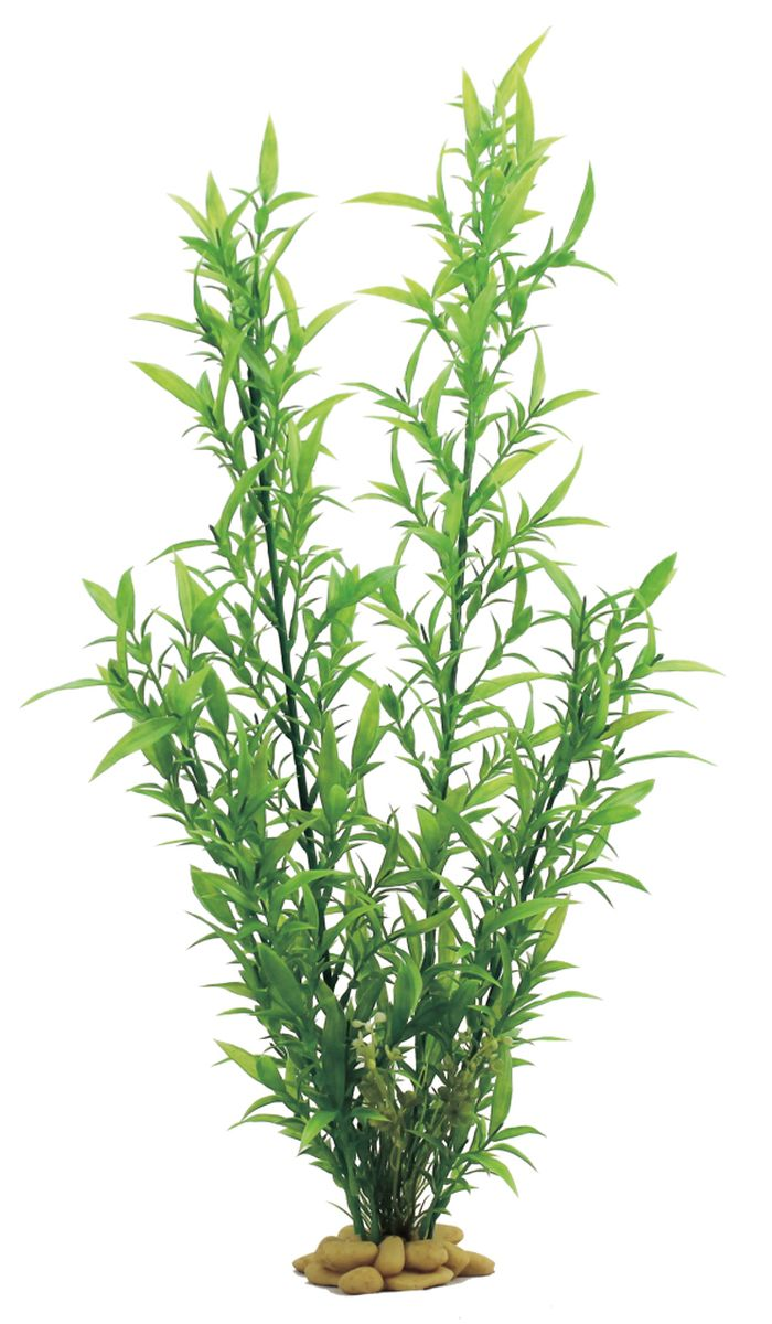 Растение для аквариума ArtUniq Гигрофила сиамская, высота 60 смART-1110108Растение для аквариума ArtUniq Гигрофила сиамская, высота 60 см