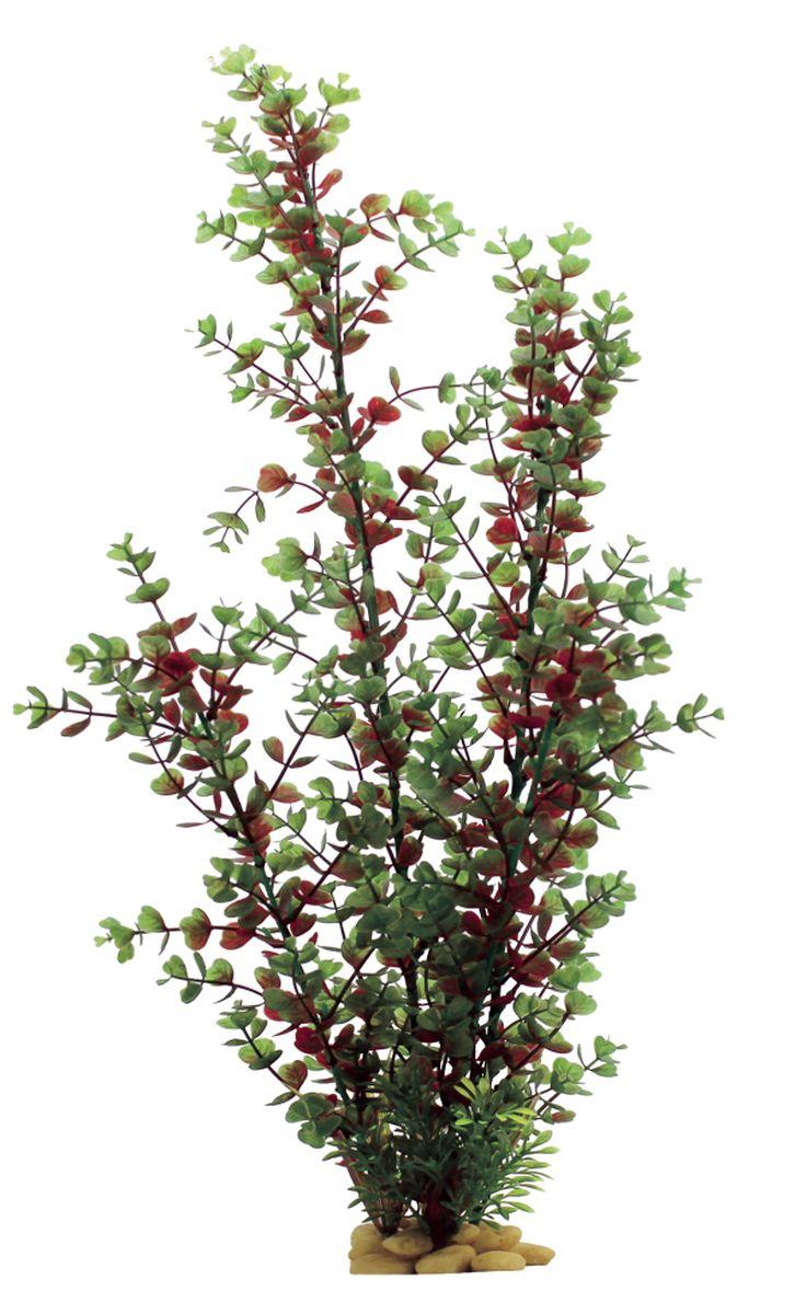 Растение для аквариума ArtUniq Бакопа красно-зеленая, высота 60 см0120710Композиция из искусственных растений ArtUniq превосходно украсит и оживит аквариум.Растения - это важная часть любой композиции, они помогут вдохнуть жизнь в ландшафт любого аквариума или террариума. А их сходствос природными порадует даже самых взыскательных ценителей.