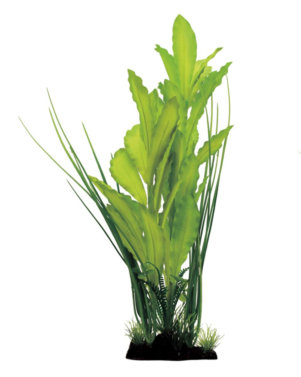 Растение для аквариума ArtUniq Эхинодорус зеленый, шелковое, высота 40 см0120710Композиция из искусственных растений ArtUniq превосходно украсит и оживит аквариум.Растения - это важная часть любой композиции, они помогут вдохнуть жизнь в ландшафт любого аквариума или террариума. А их сходствос природными порадует даже самых взыскательных ценителей.