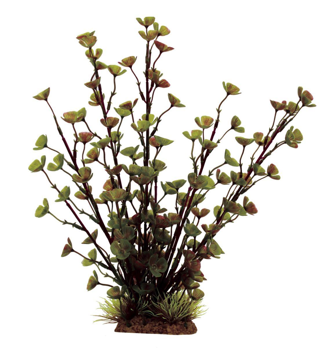 Растение для аквариума ArtUniq Марсилия, высота 32 см0120710Композиция из искусственных растений ArtUniq превосходно украсит и оживит аквариум.Растения - это важная часть любой композиции, они помогут вдохнуть жизнь в ландшафт любого аквариума или террариума. А их сходствос природными порадует даже самых взыскательных ценителей.