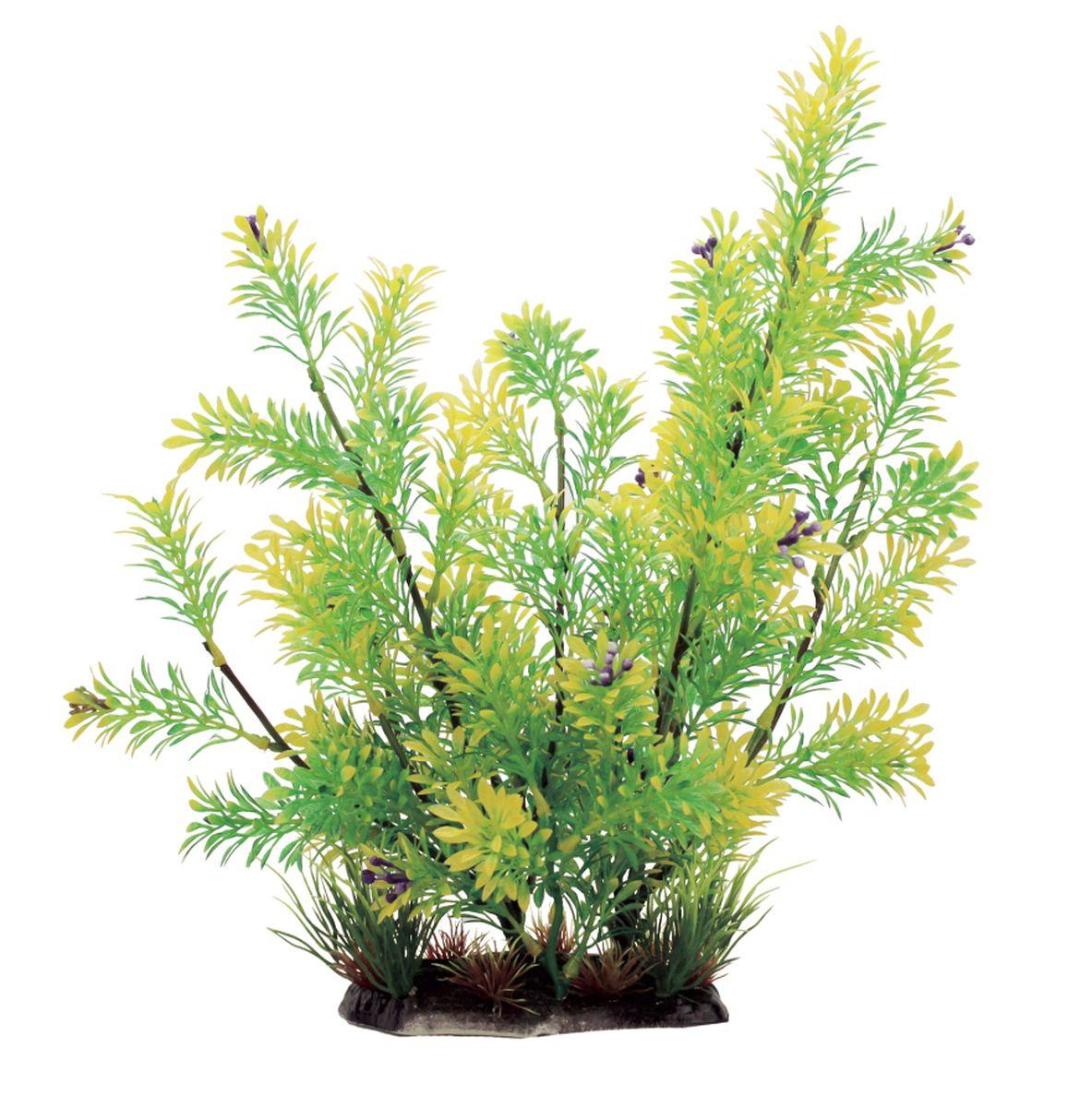 Растение для аквариума ArtUniq Ротала зеленая, высота 35 см12171996Композиция из искусственных растений ArtUniq превосходно украсит и оживит аквариум.Растения - это важная часть любой композиции, они помогут вдохнуть жизнь в ландшафт любого аквариума или террариума. А их сходствос природными порадует даже самых взыскательных ценителей.