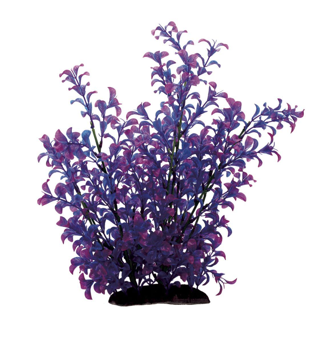 Растение для аквариума ArtUniq Людвигия фиолетовая, высота 35 см0120710Растение для аквариума ArtUniq Людвигия фиолетовая, высота 35 см