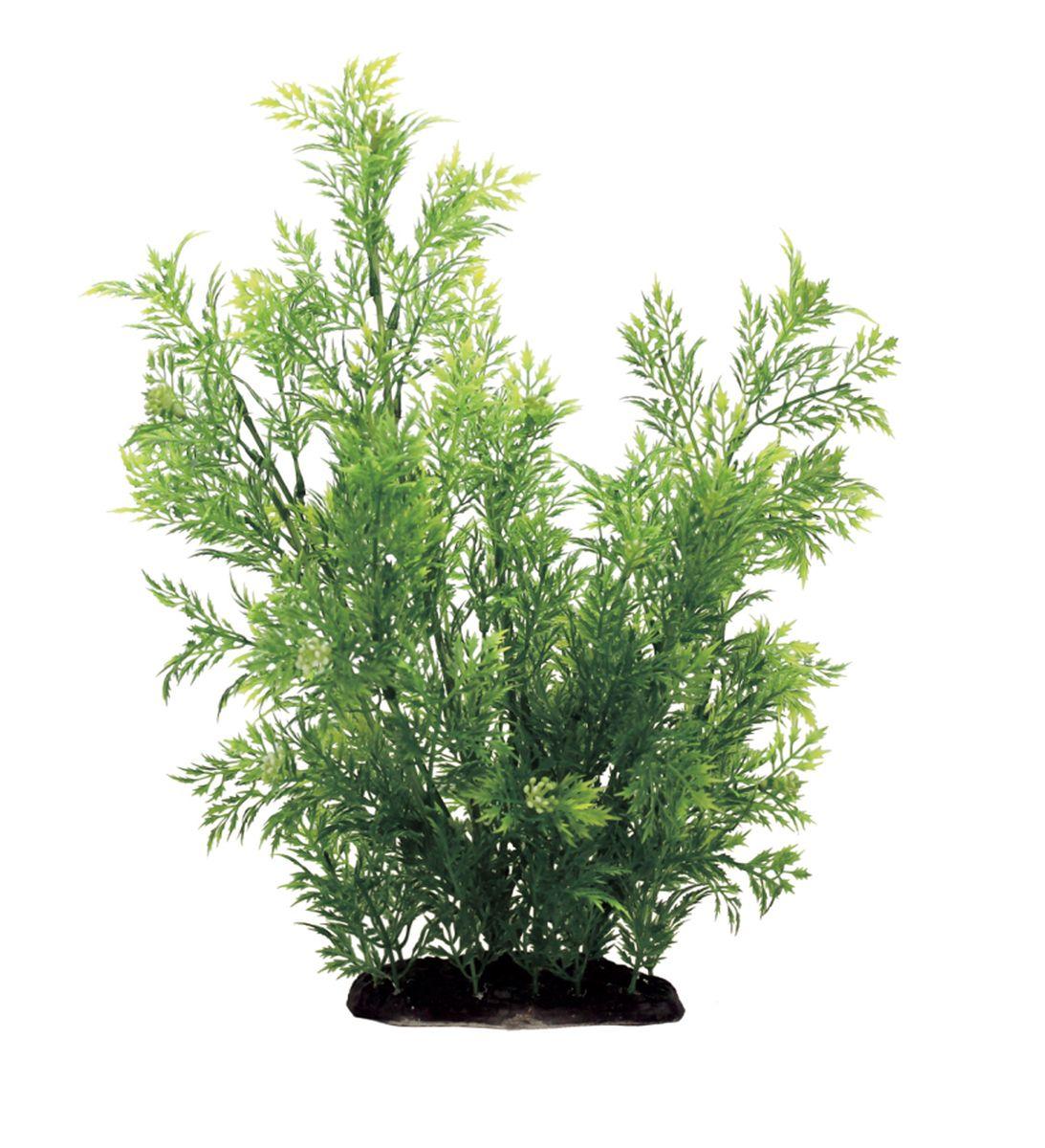Растение для аквариума ArtUniq Лютик водный, высота 35 смART-1130111Композиция из искусственных растений ArtUniq превосходно украсит и оживит аквариум.Растения - это важная часть любой композиции, они помогут вдохнуть жизнь в ландшафт любого аквариума или террариума. А их сходствос природными порадует даже самых взыскательных ценителей.
