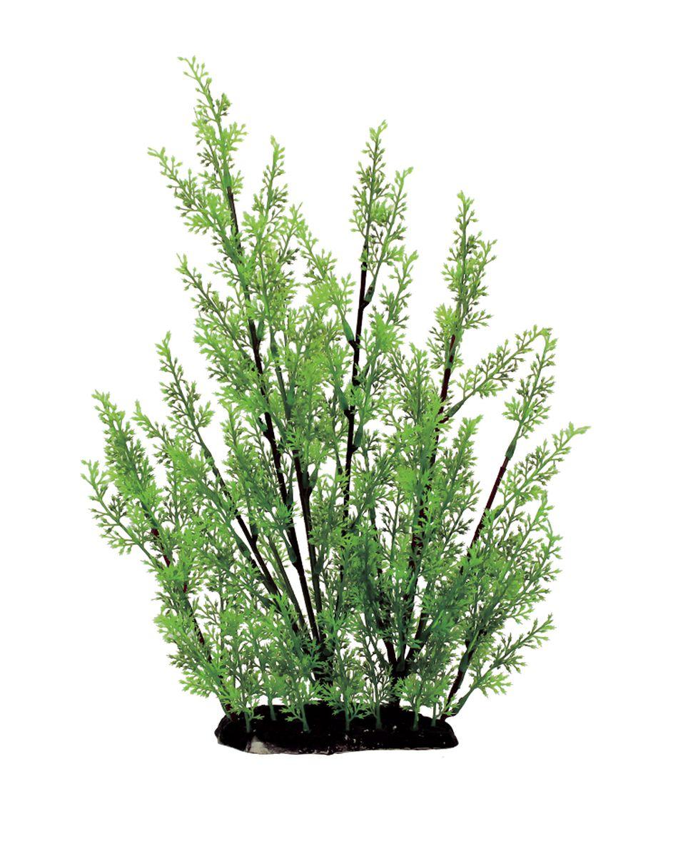 Растение для аквариума ArtUniq Ротала, высота 35 см. ART-11301120120710Композиция из искусственных растений ArtUniq превосходно украсит и оживит аквариум.Растения - это важная часть любой композиции, они помогут вдохнуть жизнь в ландшафт любого аквариума или террариума. А их сходствос природными порадует даже самых взыскательных ценителей.