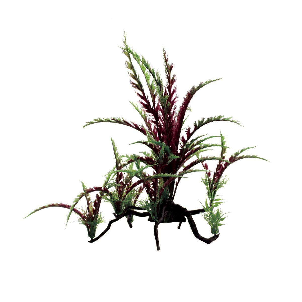 Композиция из растений для аквариума ArtUniq Дизиготека красная, 40 x 25 x 38 см0120710Композиция из искусственных растений ArtUniq превосходно украсит и оживит аквариум.Растения - это важная часть любой композиции, они помогут вдохнуть жизнь в ландшафт любого аквариума или террариума. Композиция является точной копией природного растения.