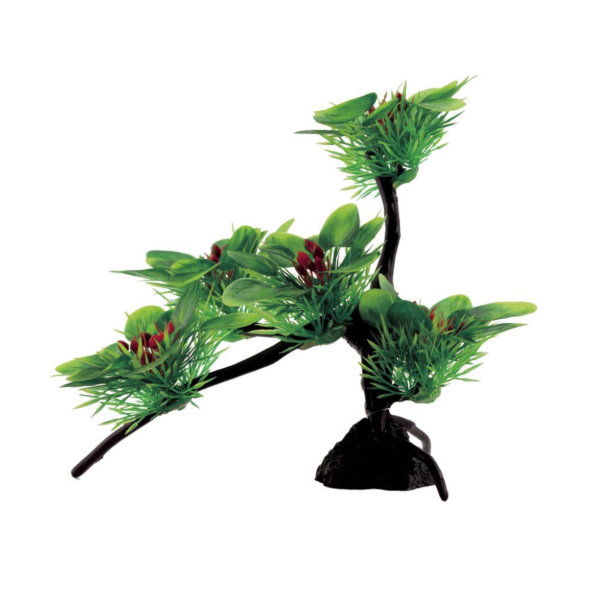 Композиция из растений для аквариума ArtUniq Буцефаландры широколистные, 22 x 16 x 22 см0120710Композиция из искусственных растений ArtUniq превосходно украсит и оживит аквариум.Растения - это важная часть любой композиции, они помогут вдохнуть жизнь в ландшафт любого аквариума или террариума. Лучше всего это сделают яркие и сочные цвета искусственных растений серии ArtPlants. Композиция является точной копией природного растения.