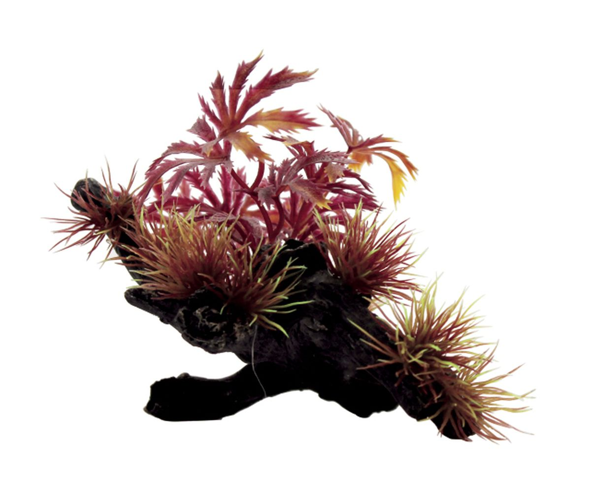 Композиция из растений для аквариума ArtUniq Абутилон красный на коряге, 20 x 14 x 10 см0120710Композиция из растений для аквариума ArtUniq Абутилон красный на коряге, 20 x 14 x 10 см