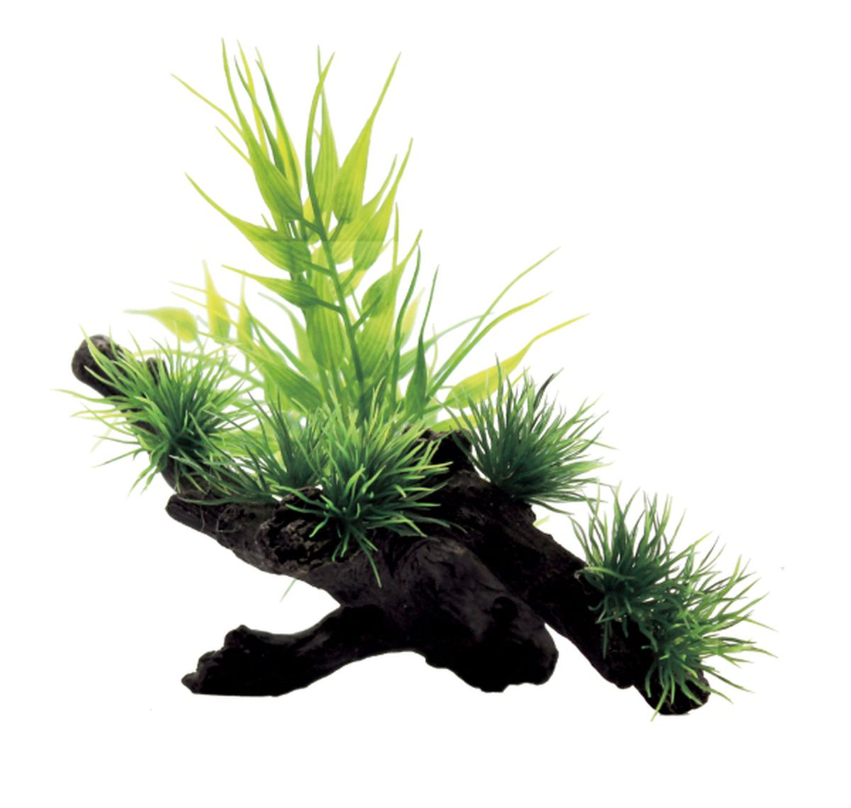 Композиция из растений для аквариума ArtUniq Бамбук на коряге, 15 x 12 x 12 см