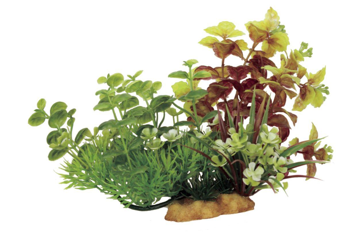 Композиция из растений для аквариума ArtUniq Лизимахия на ветке, 20 x 10 x 15 смART-1130501Композиция из искусственных растений ArtUniq превосходно украсит и оживит аквариум.Растения - это важная часть любой композиции, они помогут вдохнуть жизнь в ландшафт любого аквариума или террариума.Композиция является точной копией природного растения.