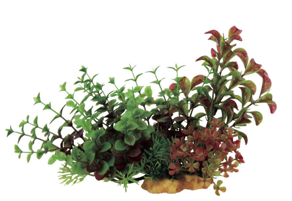 Композиция из растений для аквариума ArtUniq Людвигия и Бакопа на ветке, 20 x 10 x 15 см0120710Композиция из искусственных растений ArtUniq превосходно украсит и оживит аквариум.Растения - это важная часть любой композиции, они помогут вдохнуть жизнь в ландшафт любого аквариума или террариума. Композиция является точной копией природного растения.