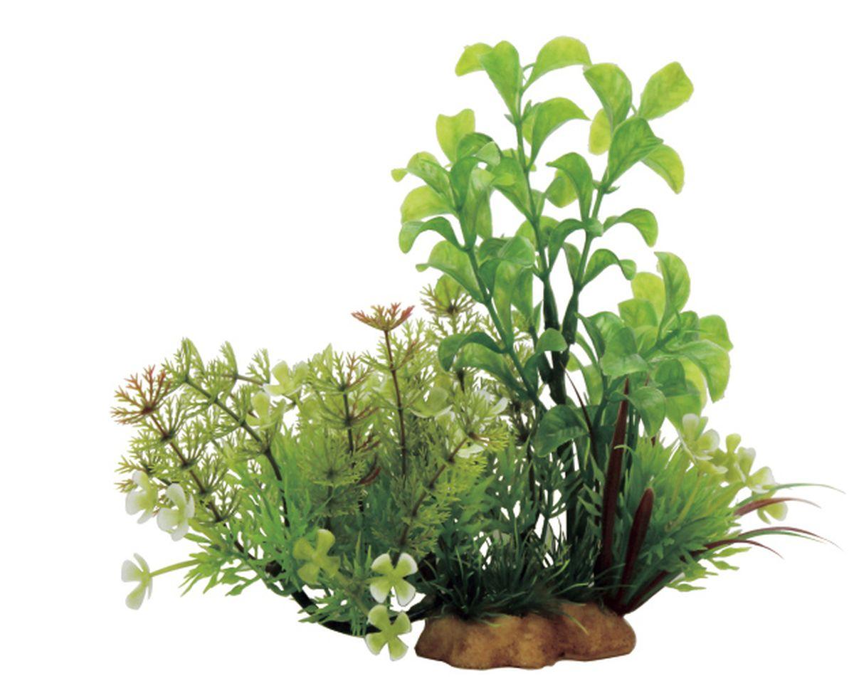 Композиция из растений для аквариума ArtUniq Людвигия и лимнофила на ветке, 20 x 10 x 15 смART-1130503Композиция из искусственных растений ArtUniq превосходно украсит и оживит аквариум.Растения - это важная часть любой композиции, они помогут вдохнуть жизнь в ландшафт любого аквариума или террариума. Композиция является точной копией природного растения.
