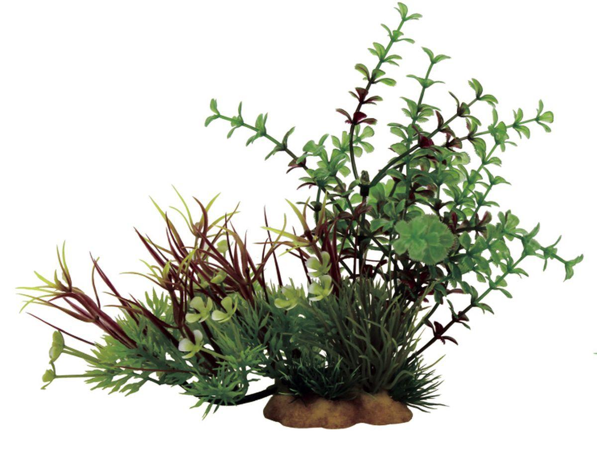 Композиция из растений для аквариума ArtUniq Микрантемум, 20 x 10 x 15 см0120710Композиция из искусственных растений ArtUniq превосходно украсит и оживит аквариум.Растения - это важная часть любой композиции, они помогут вдохнуть жизнь в ландшафт любого аквариума или террариума. Композиция является точной копией природного растения.
