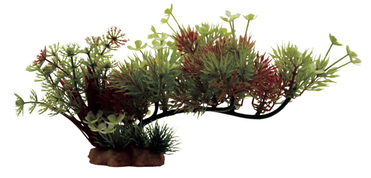 Композиция из растений для аквариума ArtUniq Роголистник на ветке, 23 x 10 x 12 см0120710Композиция из искусственных растений ArtUniq превосходно украсит и оживит аквариум.Растения - это важная часть любой композиции, они помогут вдохнуть жизнь в ландшафт любого аквариума или террариума.Композиция является точной копией природного растения.