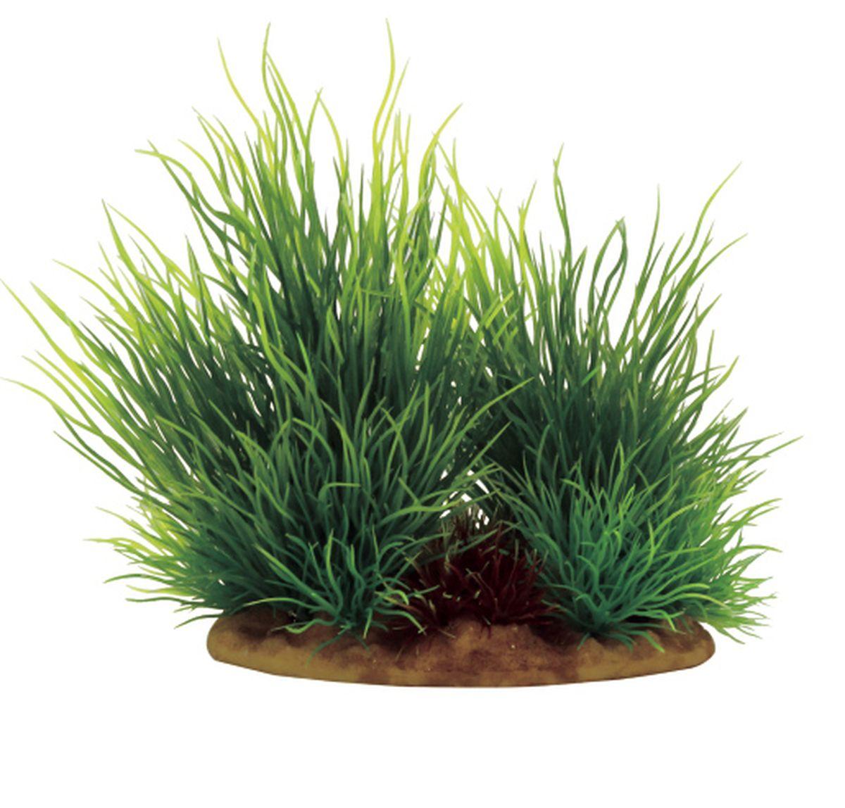 Растение для аквариума ArtUniq Ситняг, 15 x 10 x 15 смART-1130601Растение для аквариума ArtUniq Ситняг, 15 x 10 x 15 см