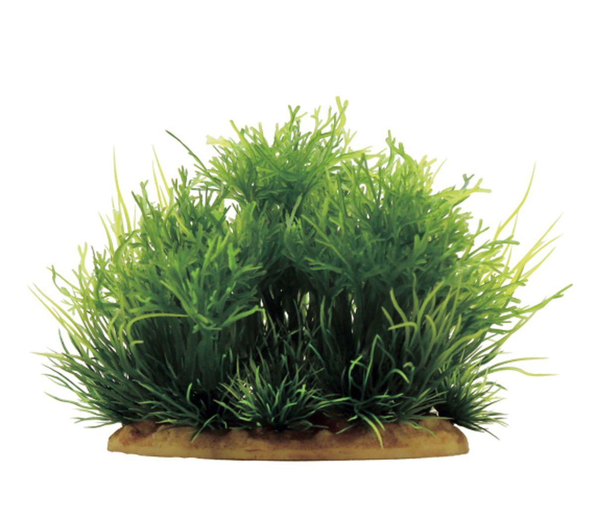 Растение для аквариума ArtUniq Мох, 15 x 10 x 15 смART-1130602Растение для аквариума ArtUniq Мох, 15 x 10 x 15 см