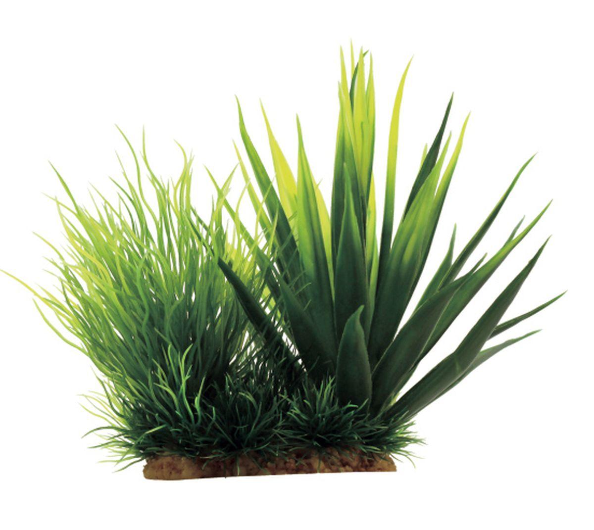 Растение для аквариума ArtUniq Агава, 18 x 12 x 16 см0120710Композиция из искусственных растений ArtUniq превосходно украсит и оживит аквариум.Растения - это важная часть любой композиции, они помогут вдохнуть жизнь в ландшафт любого аквариума или террариума. А их сходствос природными порадует даже самых взыскательных ценителей.