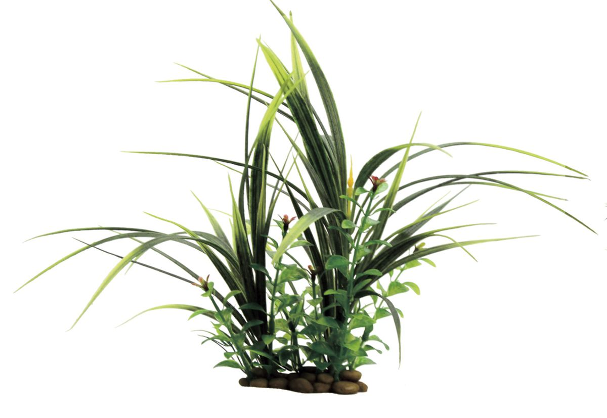 Композиция из растений для аквариума ArtUniq Акорус с растениями, 26 x 15 x 28 см0120710Композиция из искусственных растений ArtUniq превосходно украсит и оживит аквариум.Растения - это важная часть любой композиции, они помогут вдохнуть жизнь в ландшафт любого аквариума или террариума. Композиция является точной копией природного растения.