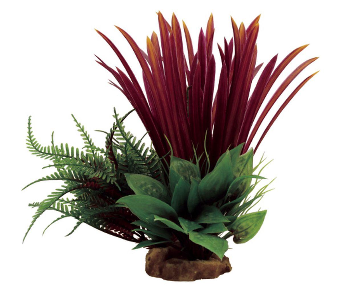 Композиция из растений для аквариума ArtUniq Бликса красная, 18 x 15 x 23 см0120710Композиция из искусственных растений ArtUniq превосходно украсит и оживит аквариум.Растения - это важная часть любой композиции, они помогут вдохнуть жизнь в ландшафт любого аквариума или террариума. Композиция является точной копией природного растения.