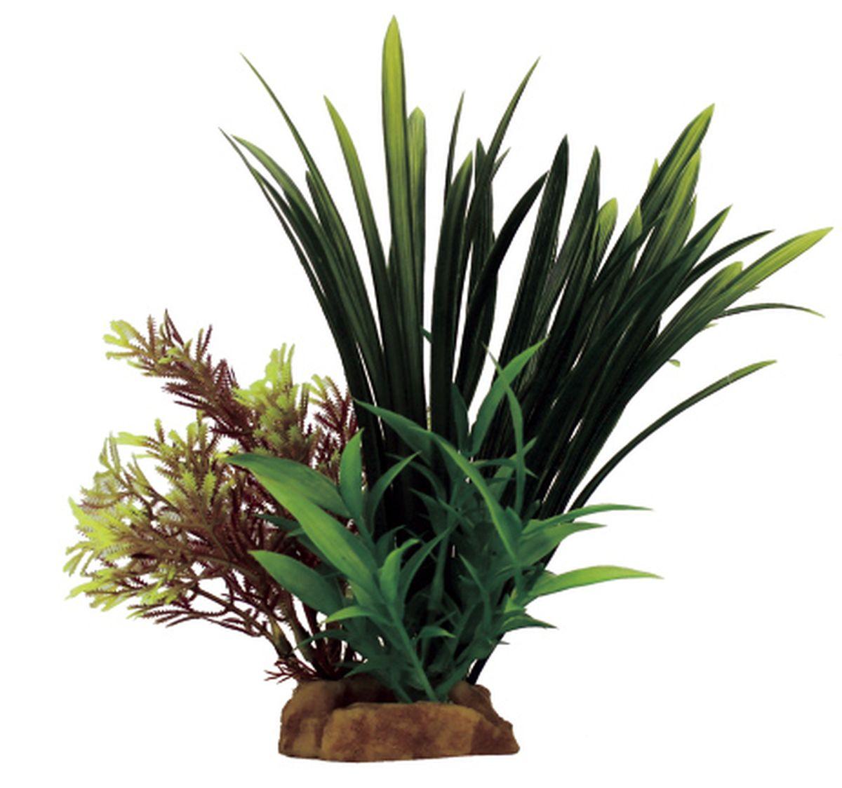 Композиция из растений для аквариума ArtUniq Бликса, 16 x 15 x 23 см декорация для аквариума artuniq пористый камень 20 5 x 10 5 x 18 8 см