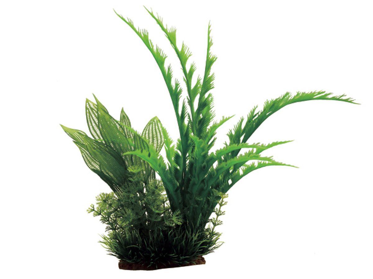 Композиция из растений для аквариума ArtUniq Дизиготека, 22 x 18 x 31 см0120710Композиция из искусственных растений ArtUniq превосходно украсит и оживит аквариум.Растения - это важная часть любой композиции, они помогут вдохнуть жизнь в ландшафт любого аквариума или террариума.Композиция является точной копией природного растения.