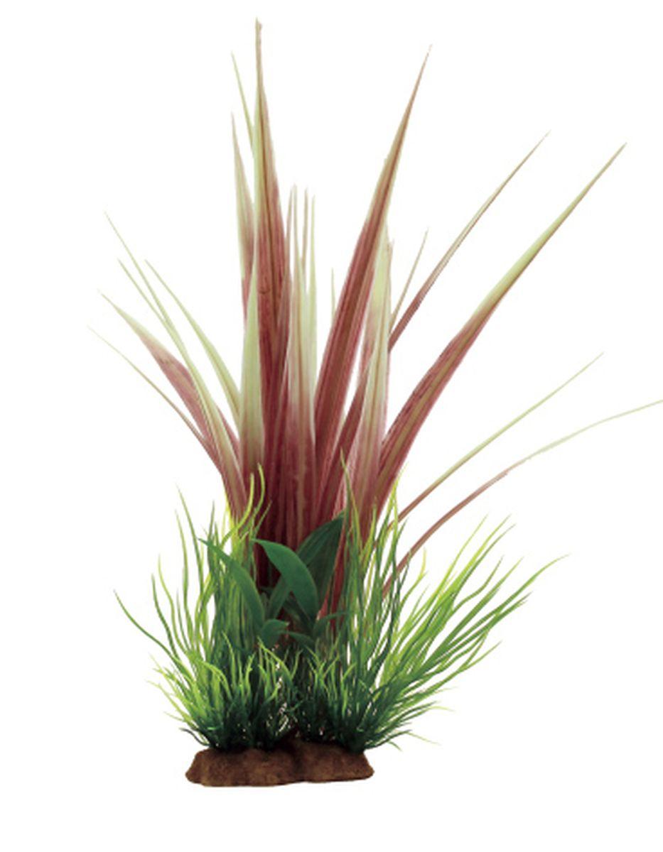 Композиция из растений для аквариума ArtUniq Акорус, 12 x 10 x 25 см декорация для аквариума artuniq пористый камень 20 5 x 10 5 x 18 8 см