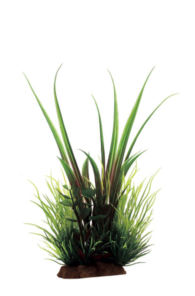 Композиция из растений для аквариума ArtUniq Акорус, 12 x 10 x 20 см0120710Композиция из искусственных растений ArtUniq превосходно украсит и оживит аквариум.Растения - это важная часть любой композиции, они помогут вдохнуть жизнь в ландшафт любого аквариума или террариума.Композиция является точной копией природного растения.