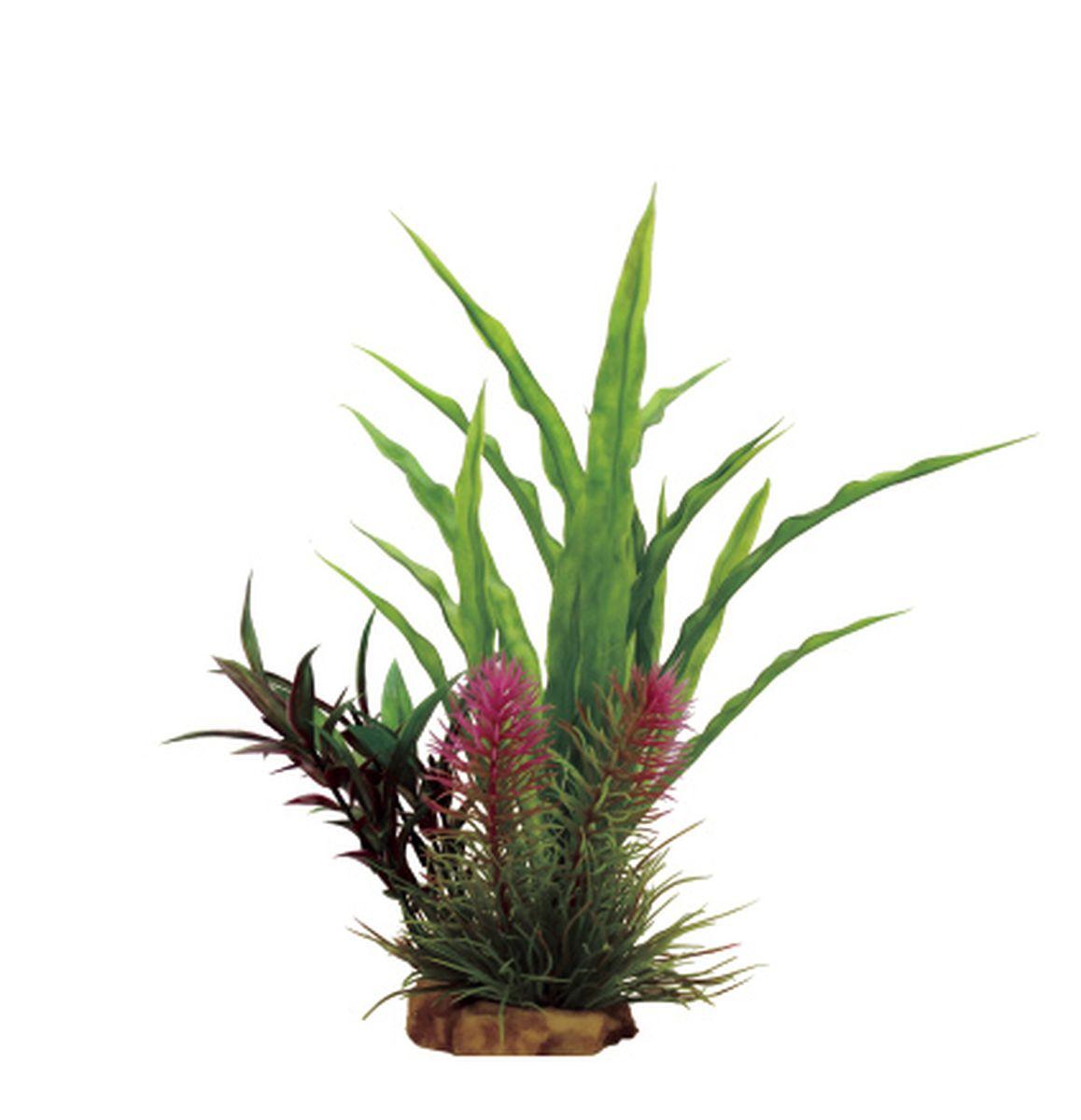 Композиция из растений для аквариума ArtUniq Криптокорина, 16 x 15 x 22 см декорация для аквариума artuniq пористый камень 20 5 x 10 5 x 18 8 см
