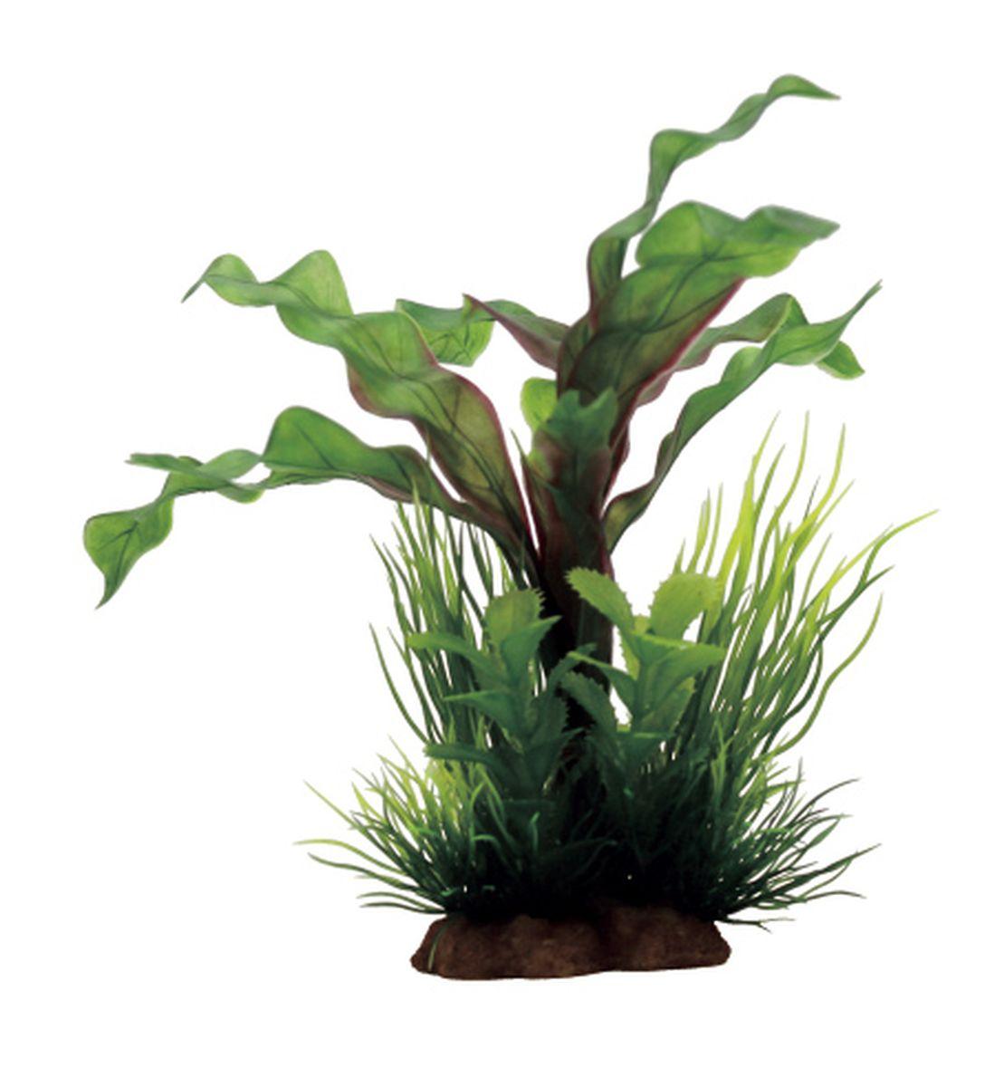 Композиция из растений для аквариума ArtUniq Апоногетон, 12 x 10 x 20 см0120710Композиция из растений для аквариума ArtUniq Апоногетон, 12 x 10 x 20 см