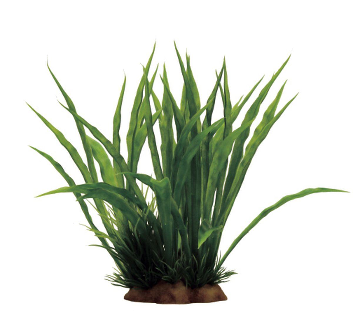 Растение для аквариума ArtUniq Криптокорина, 15 x 13 x 17 см0120710Композиция из искусственных растений ArtUniq превосходно украсит и оживит аквариум.Растения - это важная часть любой композиции, они помогут вдохнуть жизнь в ландшафт любого аквариума или террариума. А их сходствос природными порадует даже самых взыскательных ценителей.