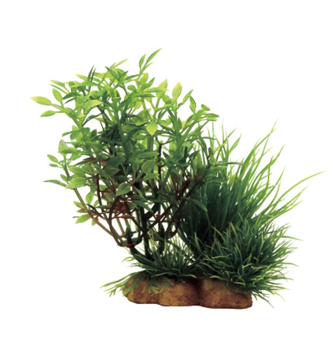 Композиция из растений для аквариума ArtUniq Микрантемум, 12 x 5 x 12 см0120710Композиция из искусственных растений ArtUniq превосходно украсит и оживит аквариум.Растения - это важная часть любой композиции, они помогут вдохнуть жизнь в ландшафт любого аквариума или террариума. Композиция является точной копией природного растения.