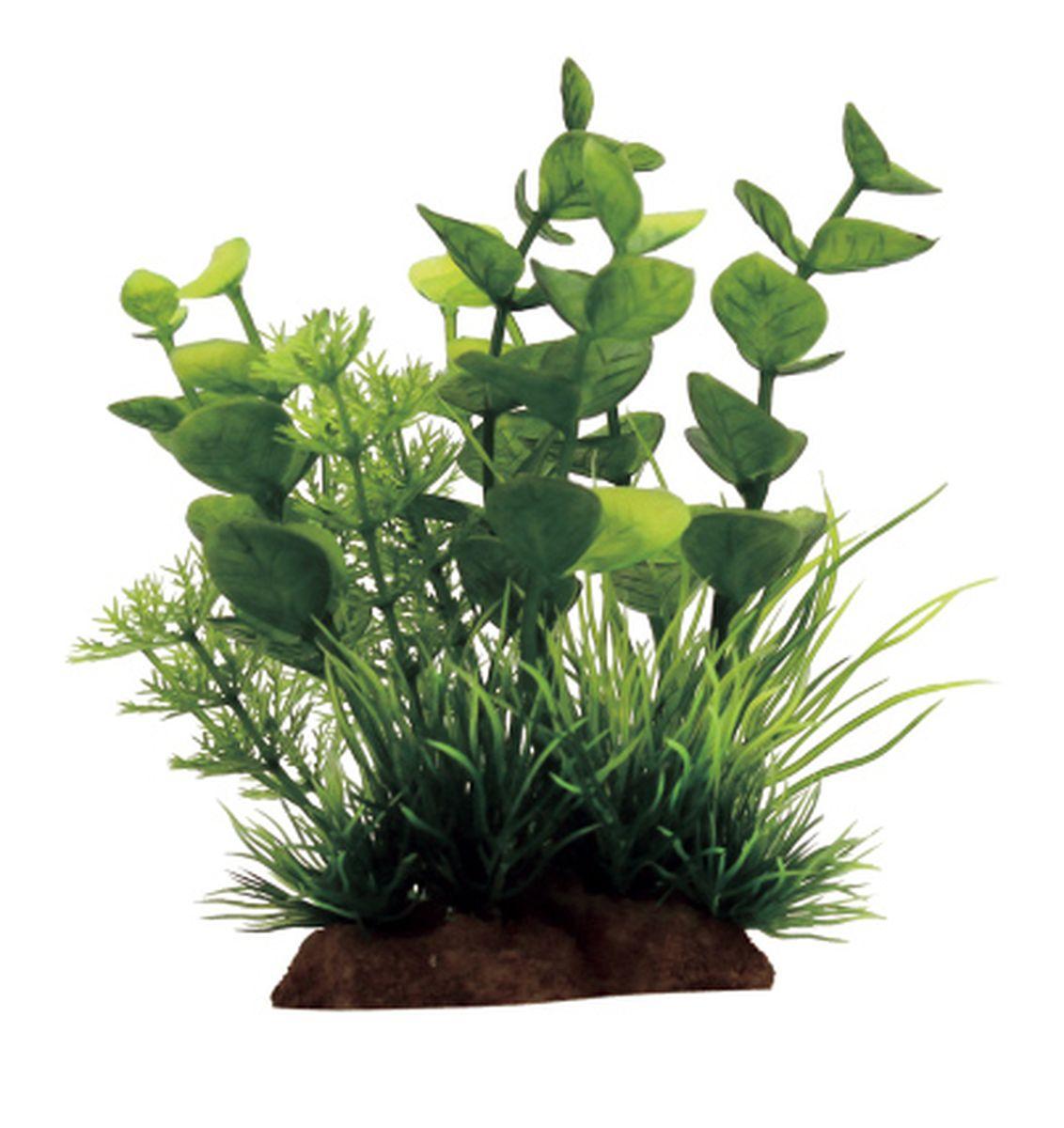 Композиция из растений для аквариума ArtUniq Бакопа, 10 x 5 x 12 см0120710Композиция из искусственных растений ArtUniq превосходно украсит и оживит аквариум.Растения - это важная часть любой композиции, они помогут вдохнуть жизнь в ландшафт любого аквариума или террариума. Композиция является точной копией природного растения.
