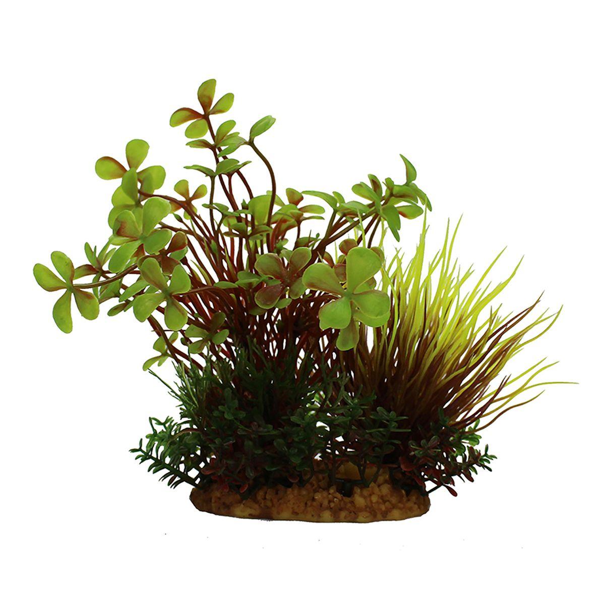 Растение для аквариума ArtUniq Марсилия, высота 15 см0120710Композиция из искусственных растений ArtUniq превосходно украсит и оживит аквариум.Растения - это важная часть любой композиции, они помогут вдохнуть жизнь в ландшафт любого аквариума или террариума. Лучше всего это сделают яркие и сочные цвета искусственных растений серии ArtPlants. А их сходствос природными порадует даже самых взыскательных ценителей.