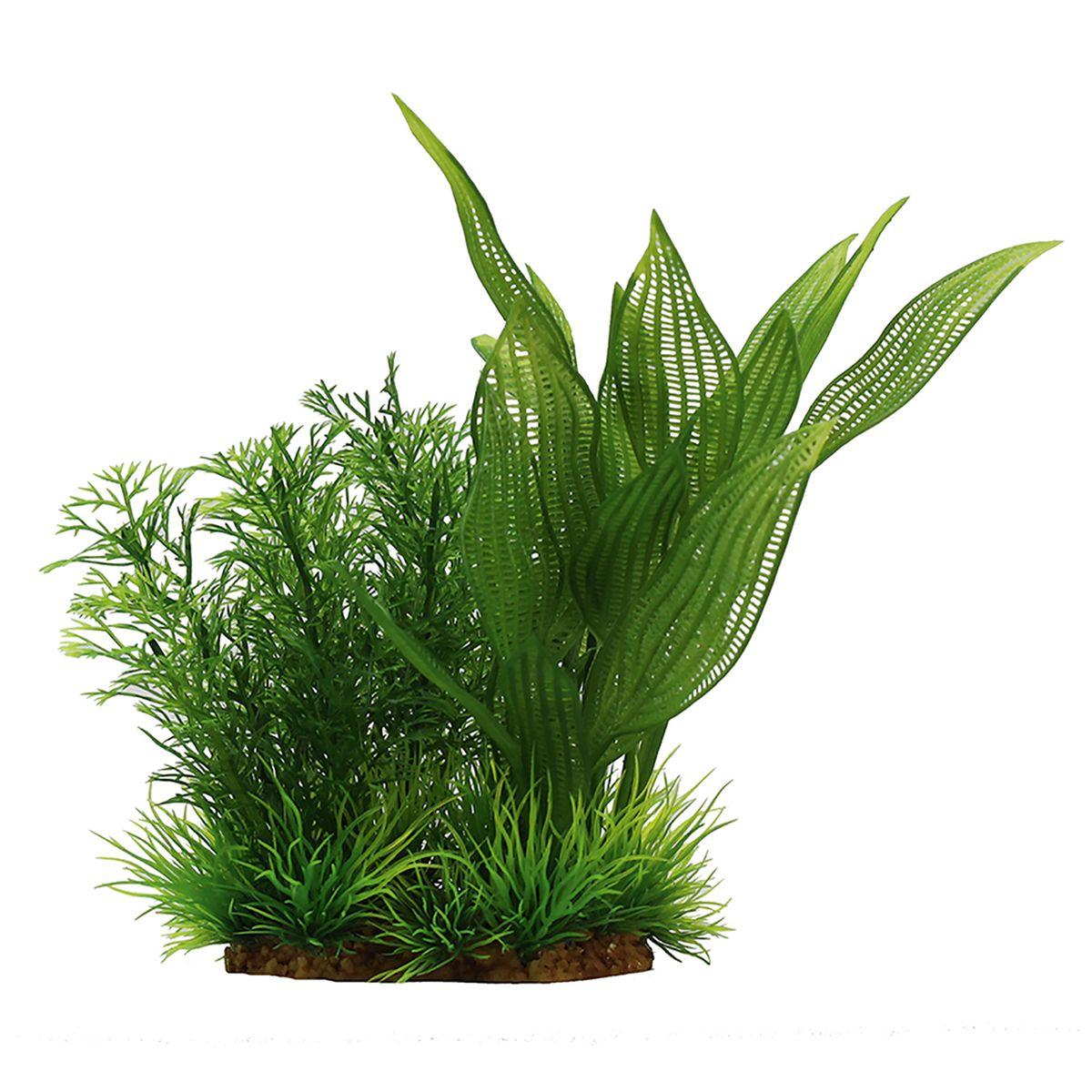 Растение для аквариума ArtUniq Апоногетон мадагаскарский, высота 15 смART-1140112Растение для аквариума ArtUniq Апоногетон мадагаскарский, высота 15 см