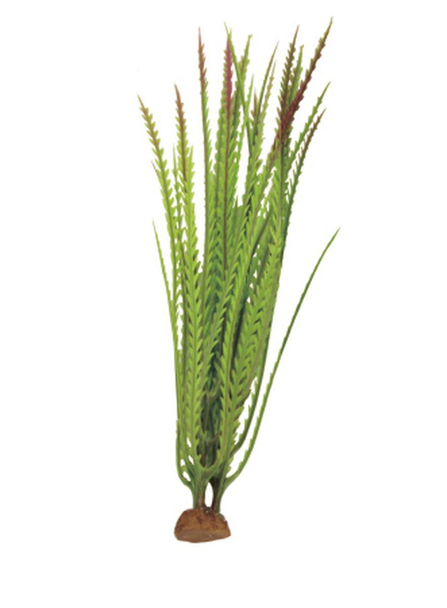 Растение для аквариума ArtUniq Гигрофила перистонадрезанная, 6 x 6 x 19 см12171996Растение для аквариума ArtUniq Гигрофила перистонадрезанная, 6 x 6 x 19 см