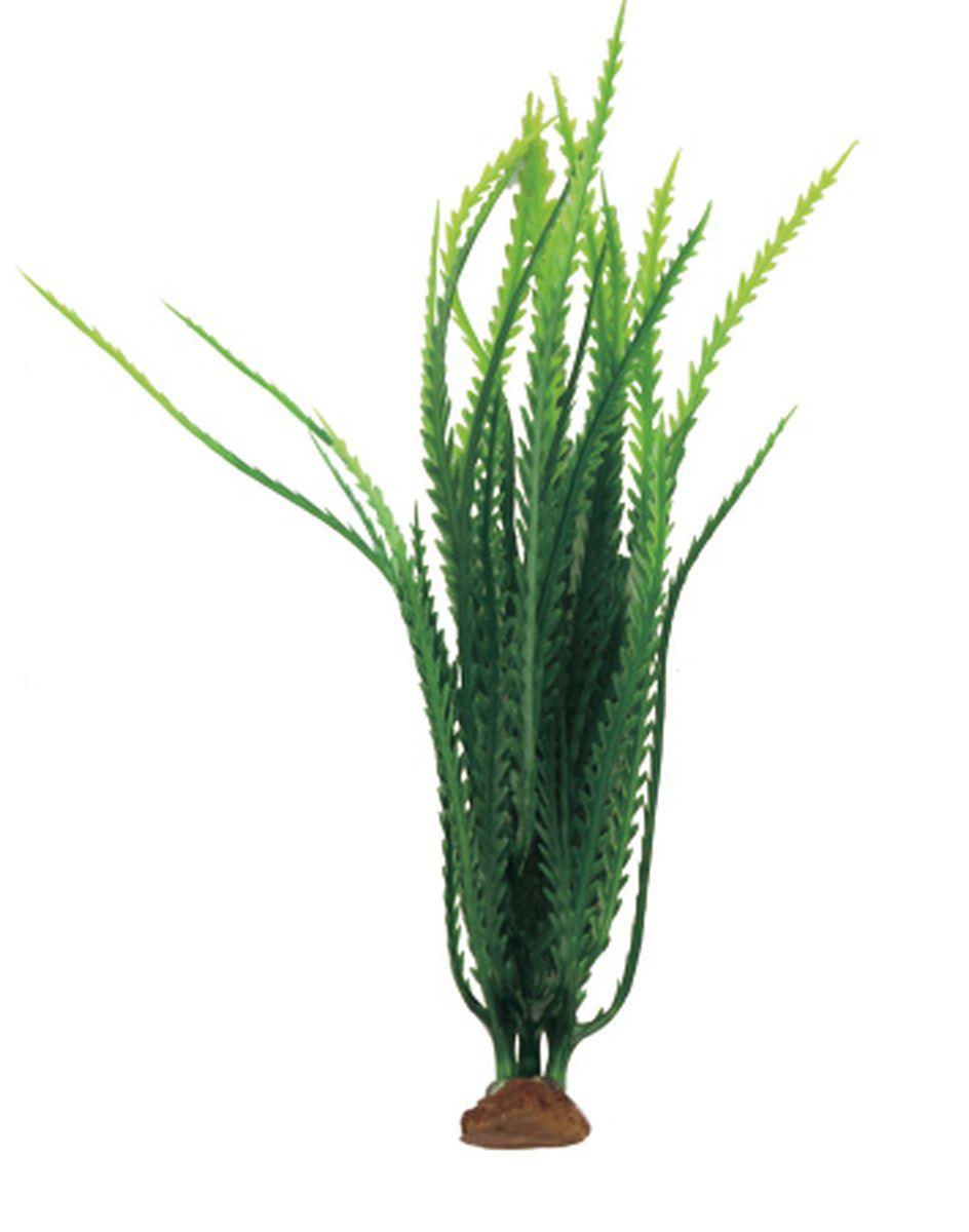 Растение для аквариума ArtUniq Гигрофила перистонадрезанная темно-зеленая, 6 x 6 x 19 смART-1140507Композиция из искусственных растений ArtUniq превосходно украсит и оживит аквариум.Растения - это важная часть любой композиции, они помогут вдохнуть жизнь в ландшафт любого аквариума или террариума. А их сходствос природными порадует даже самых взыскательных ценителей.