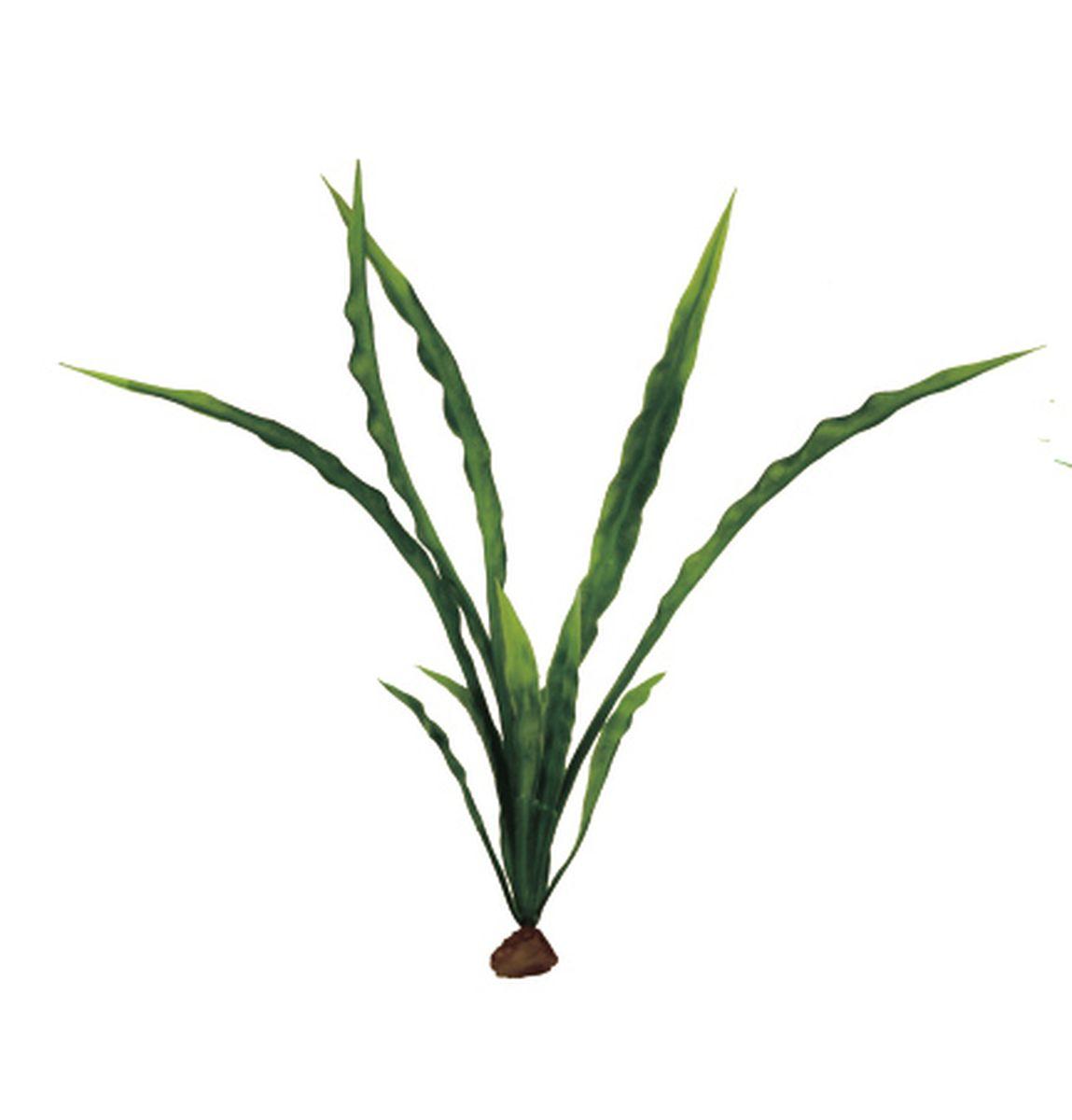 Растение для аквариума ArtUniq Криптокорина курчавая, 6 x 6 x 20 см0120710Композиция из искусственных растений ArtUniq превосходно украсит и оживит аквариум.Растения - это важная часть любой композиции, они помогут вдохнуть жизнь в ландшафт любого аквариума или террариума. А их сходствос природными порадует даже самых взыскательных ценителей.