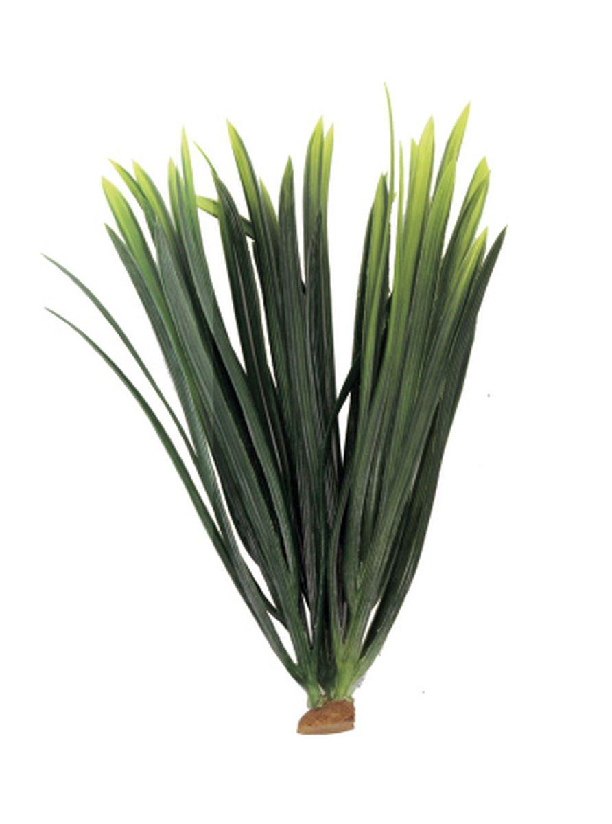 Растение для аквариума ArtUniq Бликса, 6 x 6 x 22 смART-1140512Композиция из искусственных растений ArtUniq превосходно украсит и оживит аквариум.Растения - это важная часть любой композиции, они помогут вдохнуть жизнь в ландшафт любого аквариума или террариума. А их сходствос природными порадует даже самых взыскательных ценителей.