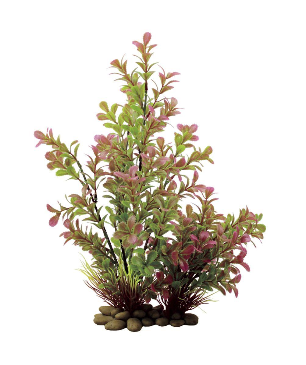 Растение для аквариума ArtUniq Прозерпинака, высота 32 смART-1150102Композиция из искусственных растений ArtUniq превосходно украсит и оживит аквариум.Растения - это важная часть любой композиции, они помогут вдохнуть жизнь в ландшафт любого аквариума или террариума. А их сходствос природными порадует даже самых взыскательных ценителей.