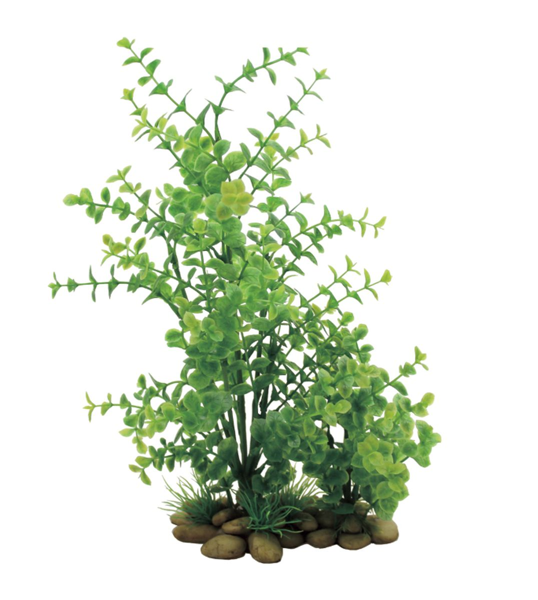 Растение для аквариума ArtUniq Лизимахия, высота 38 см0120710Композиция из искусственных растений ArtUniq превосходно украсит и оживит аквариум.Растения - это важная часть любой композиции, они помогут вдохнуть жизнь в ландшафт любого аквариума или террариума. А их сходствос природными порадует даже самых взыскательных ценителей.