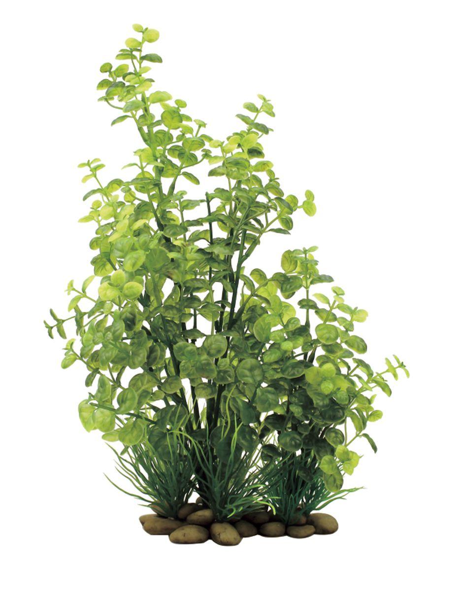 Растение для аквариума ArtUniq Кардамин, высота 38 см0120710Растение для аквариума ArtUniq Кардамин, высота 38 см