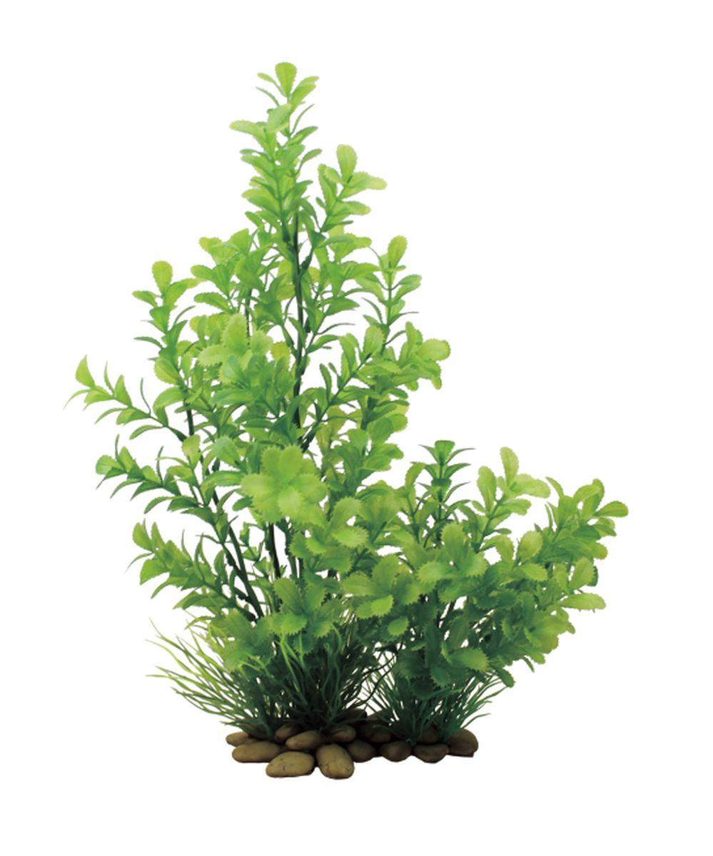 Растение для аквариума ArtUniq Прозерпинака, высота 30 см101246Композиция из искусственных растений ArtUniq превосходно украсит и оживит аквариум.Растения - это важная часть любой композиции, они помогут вдохнуть жизнь в ландшафт любого аквариума или террариума. А их сходствос природными порадует даже самых взыскательных ценителей.