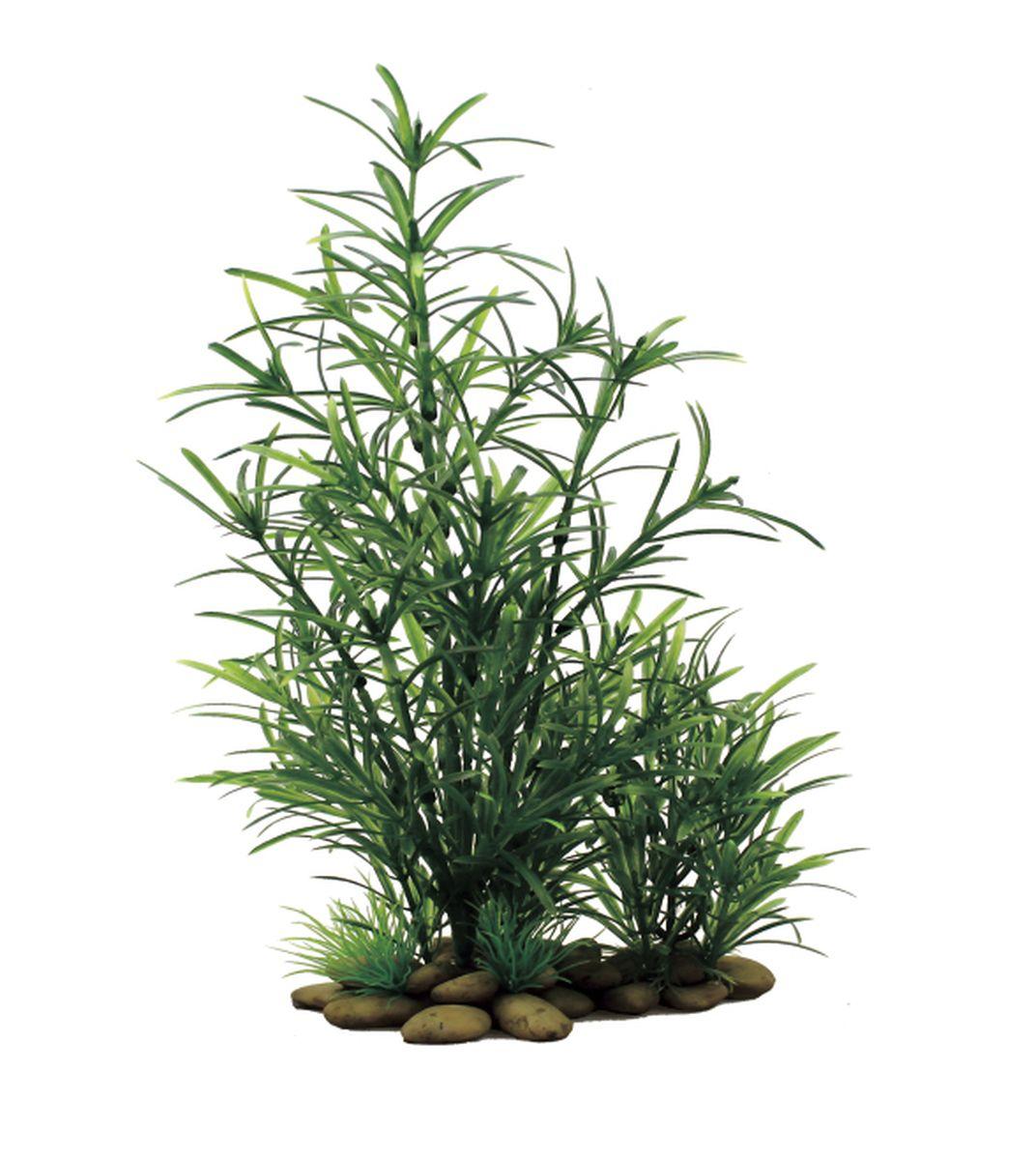 Растение для аквариума ArtUniq Наяда, высота 30 см0120710Композиция из искусственных растений ArtUniq превосходно украсит и оживит аквариум.Растения - это важная часть любой композиции, они помогут вдохнуть жизнь в ландшафт любого аквариума или террариума. А их сходствос природными порадует даже самых взыскательных ценителей.
