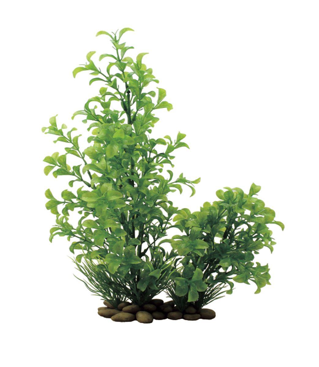 Растение для аквариума ArtUniq Людвигия зеленая, высота 30 см0120710Композиция из искусственных растений ArtUniq превосходно украсит и оживит аквариум.Растения - это важная часть любой композиции, они помогут вдохнуть жизнь в ландшафт любого аквариума или террариума. А их сходствос природными порадует даже самых взыскательных ценителей.